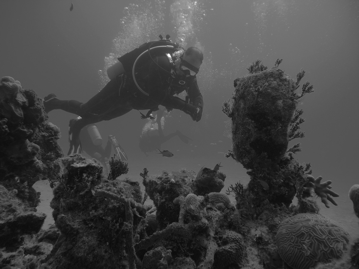 SCUBA Diving Photographs